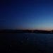 月曜日早朝、港の鯵釣り。釣れる数がずいぶん減りました。小さなイワシもサビキに喰いついて「五目釣りの様相」です。日高港湾 和歌山県御坊市