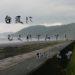 「台風に むくれてみても 始まらず」和歌山県県御坊市周辺の釣り